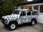 land_rover_defender_foliert_im_zebra-look_20130923_1604499351